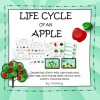 Apple Life Cycle Unit of Work: 17 pages