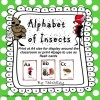 Alphabet of Insects: 27 pages