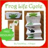 Frog Folding Life Cycle Activity