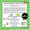Phonological Awareness USA Mega Pack