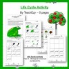 Life Cycle Activity Year 4
