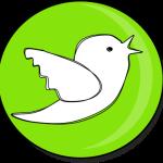 website twitter button teachezy